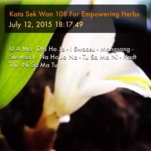 Dork Tong Flower - Kata Sek Wan Chanting Tutorial Cover Image